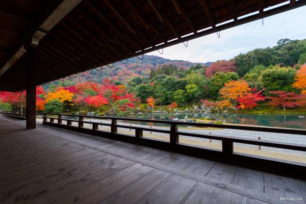 京都 天龍寺 写真