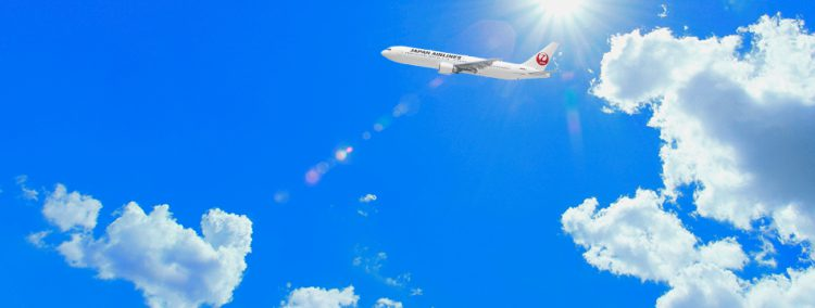 JAL/ANA 2019 春夏 格安航空券 売出し